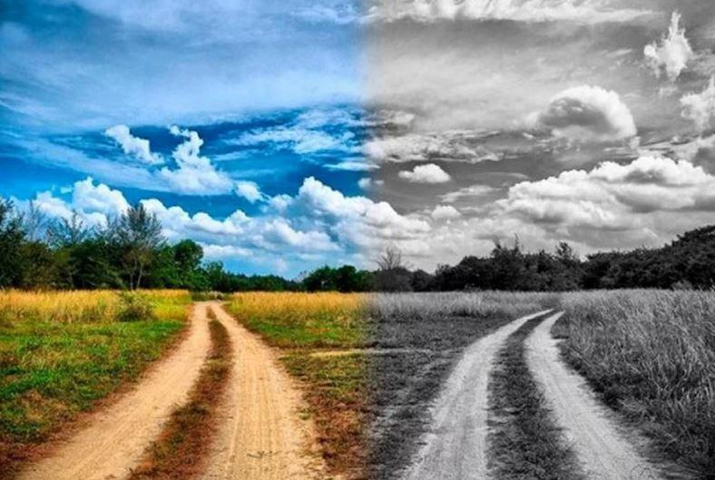 Расходящиеся дороги (иллюстрация из открытых источников)