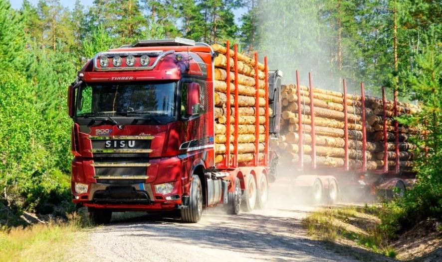 Вывоз леса кругляка (иллюстрация из открытых источников)
