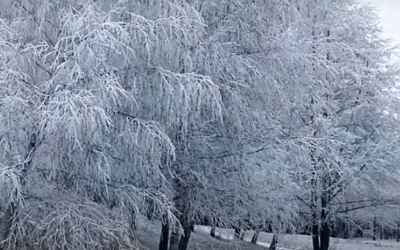 Морозная погода (иллюстрация из открытых источников)