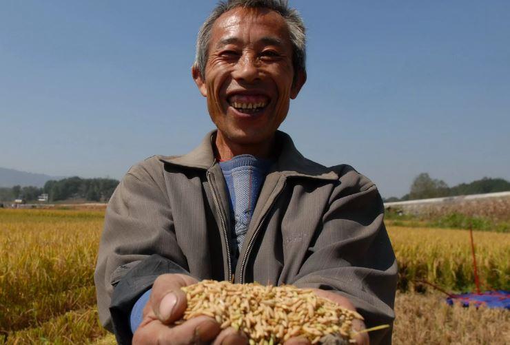 Китаец (иллюстрация из открытых источников).