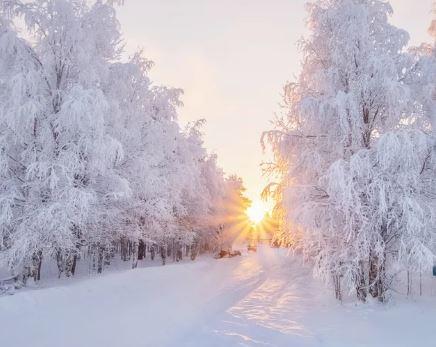 В центре России 23 февраля установится морозная и солнечная погода (фото из открытых источников)