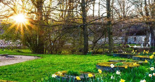 Погода в апреле: тепло, дождливо, ветрено (фото из открытых источников)